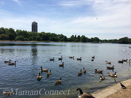 Etang Serpentine Hyde Park Londres