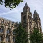 Londres avec bébé: musée et shopping