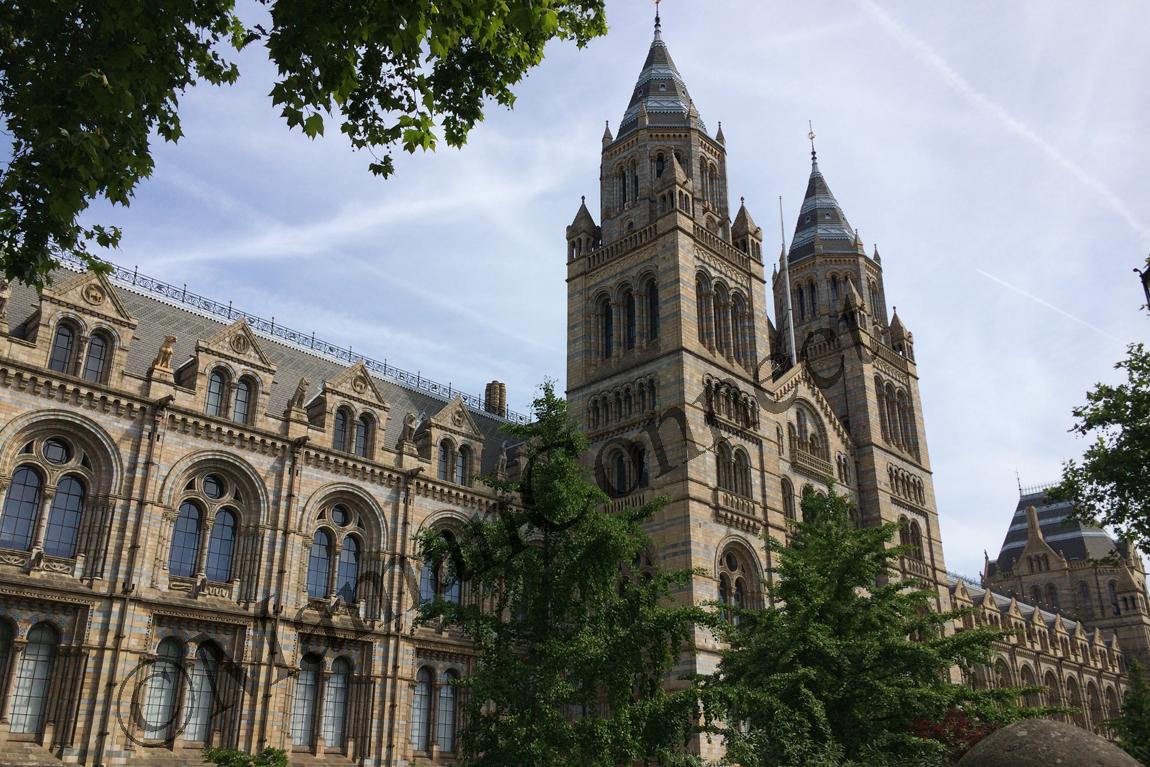 History Natural Museum London