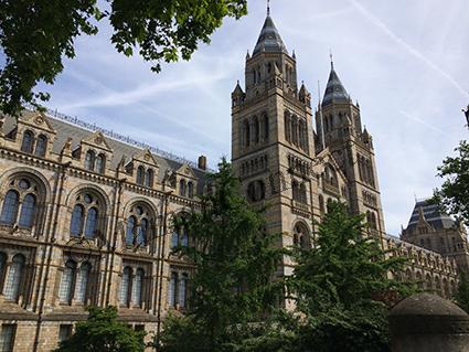 Musée d'histoire naturelle Londres