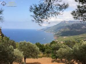Côte de Majorque