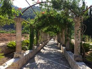 Les Jardins d'Alfabia
