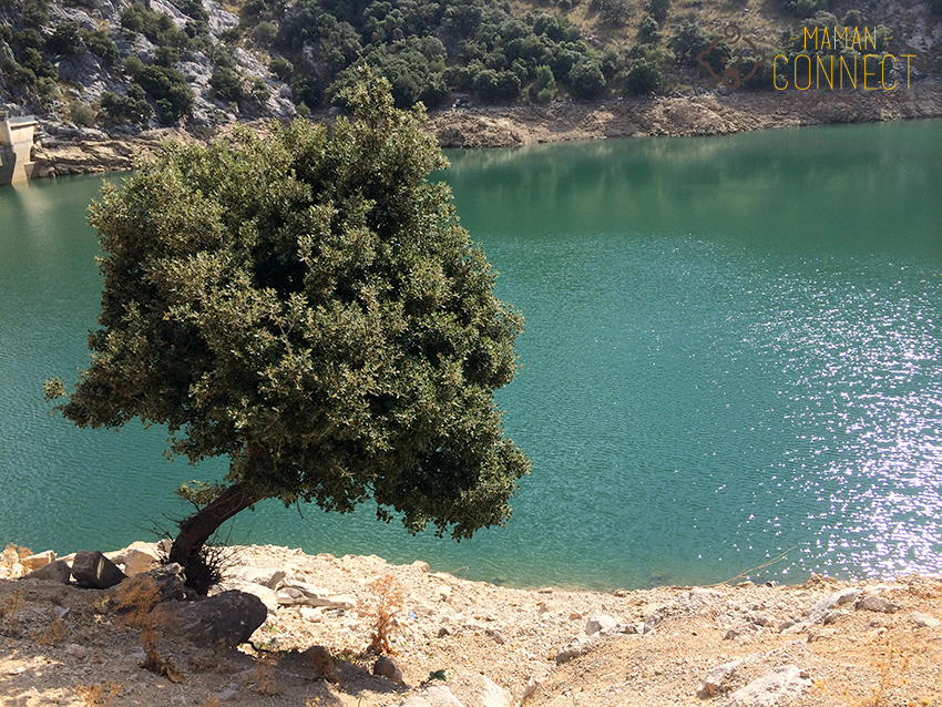 Lac Gorg Blau Majorque