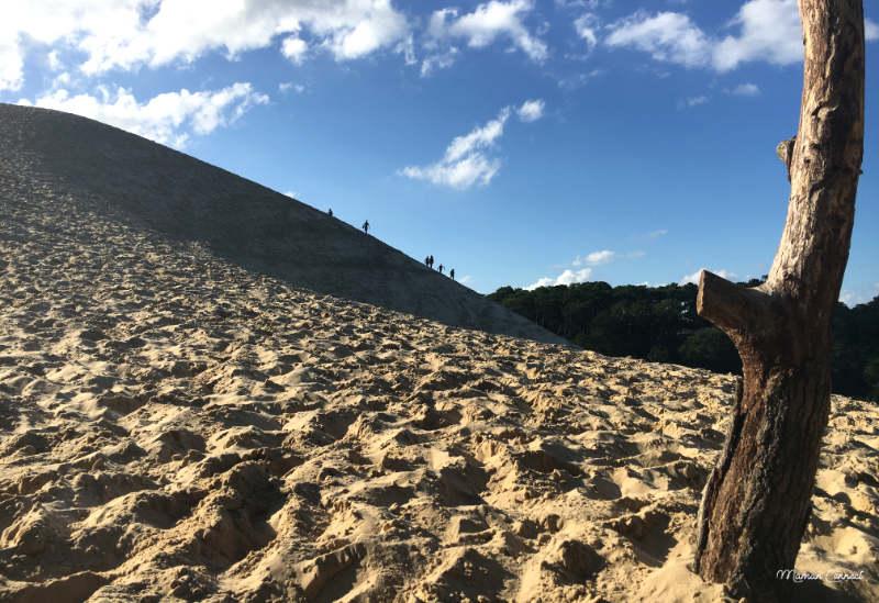 dune du pyla pilat