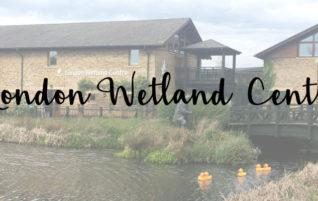 Londres en famille : à la découverte du London Wetland Centre