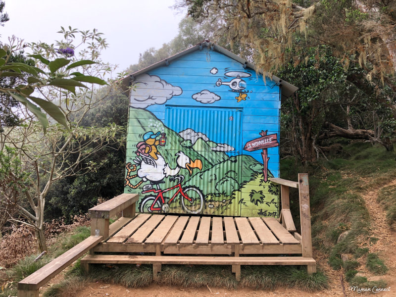 Cabane dodo Mafate